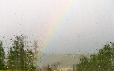 On the other side of rain…